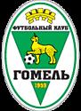 Гомель (Беларусь)